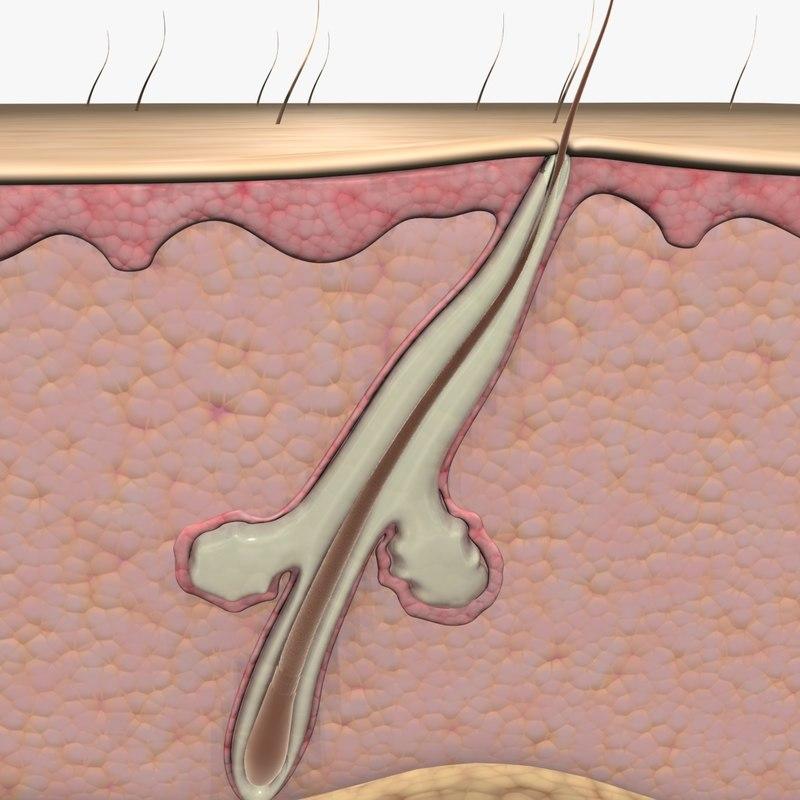 borodavki-na-vokrug-analnogo-otverstiya