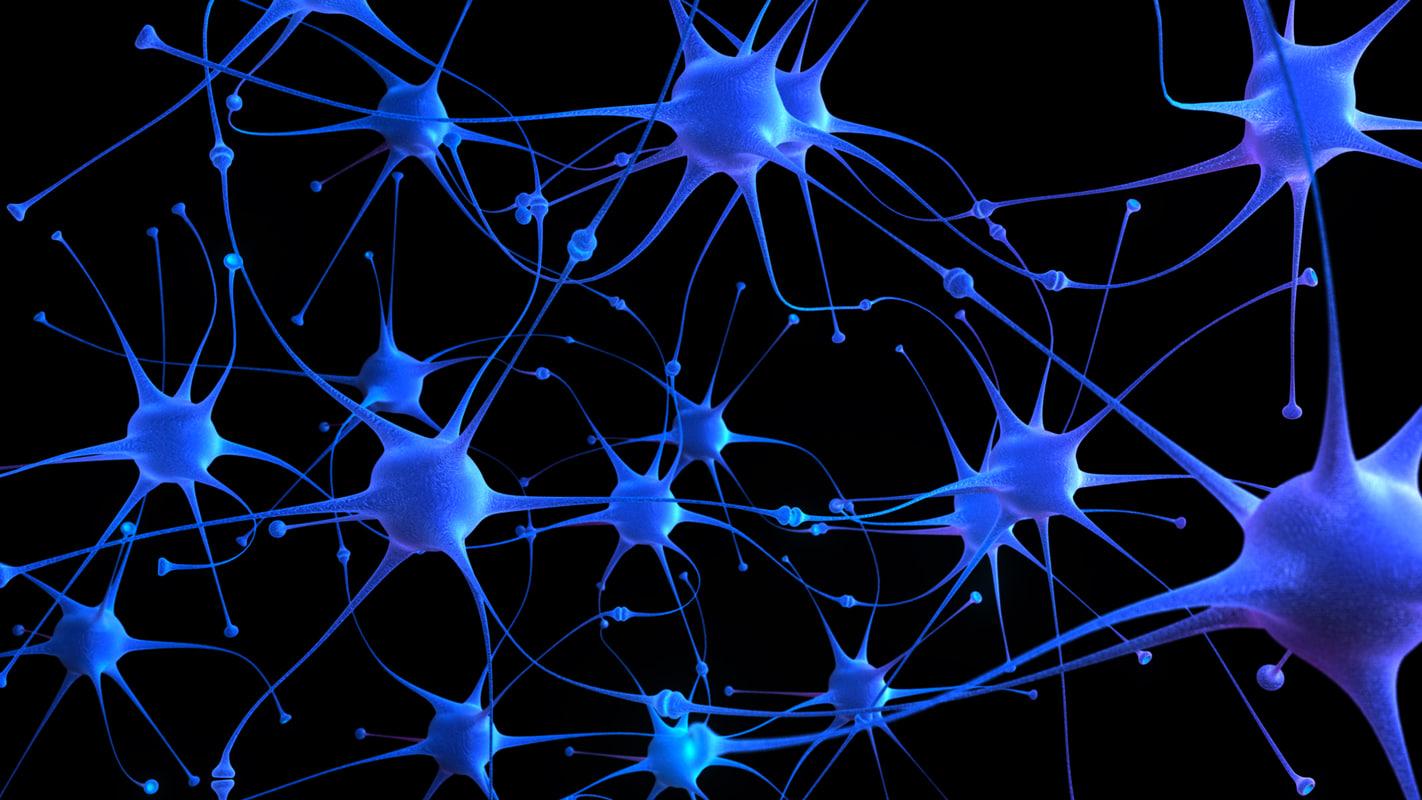 Мозг речь и язык Нейролингвистика  VK
