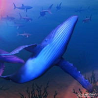 3ds max humpback whale