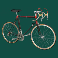 maya bike racing