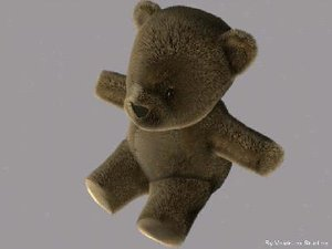 max teddy bear