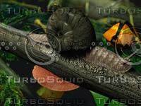 3d animating snail model