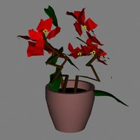 lightwave poinsettia flower