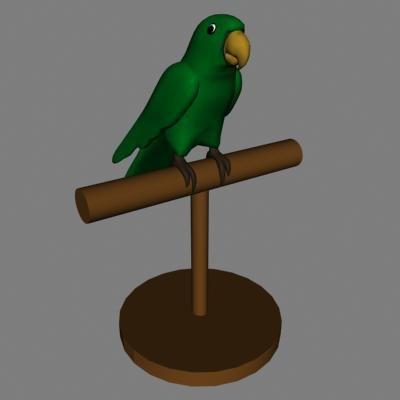 3d parrot bird