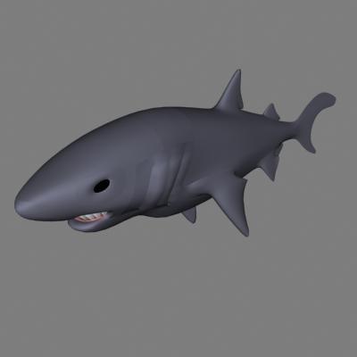 shark dxf