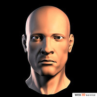 A Super Male Head 3d model