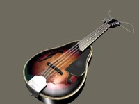free max model zipped mandolin strings
