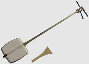 plucked japanese lute 3d model