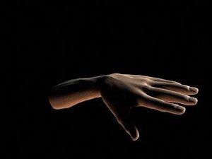 male hand max
