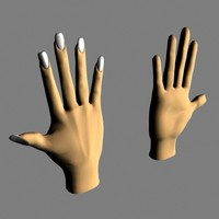 male female hands max