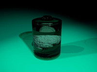 glass jar brain dxf