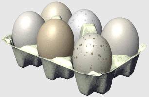 3d dozen eggs model