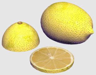 3ds max lemon slice