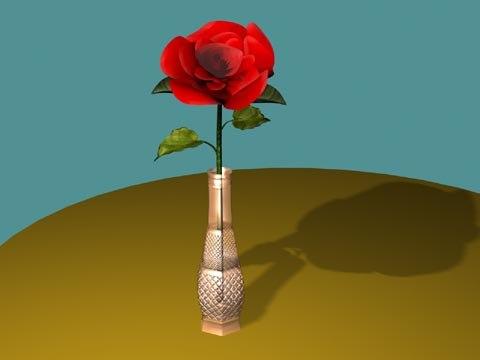 rose vase max