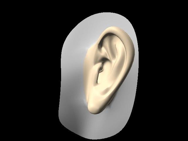 lightwave human ear