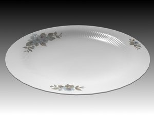 3d dish plate