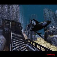 killer whale 3d max