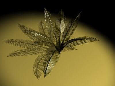 palm plant 3d max