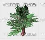 bush.3DS