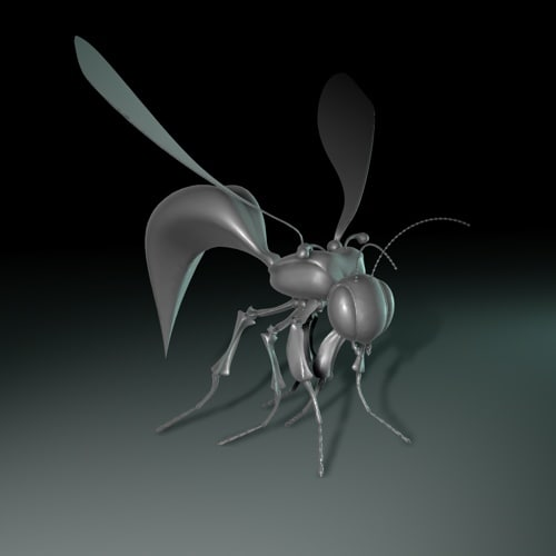 insect 3d model