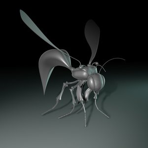 insect legs wings 3d model
