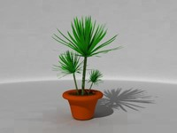 3ds max house plant