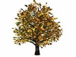 lightwave tree bryce