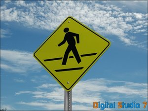 crosswalk sign max