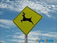3d model deer sign