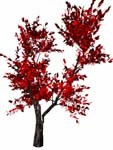 mountain ash bryce 3d model