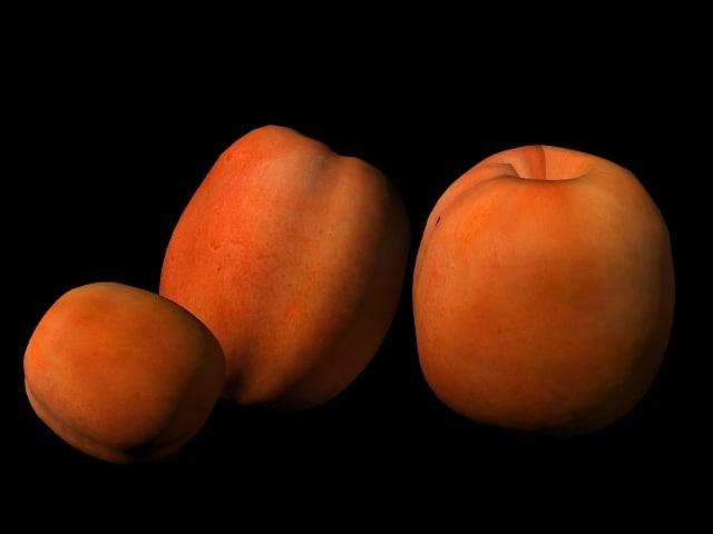 max apricot orange fruit