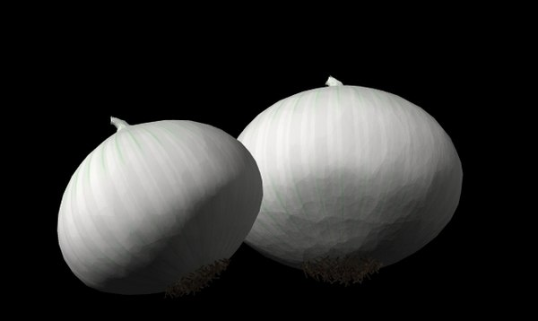 onion white 3d model