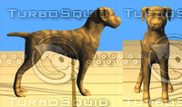 3d model of boxer dog