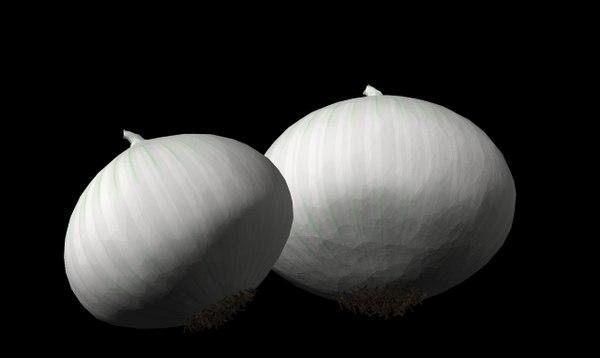 onion white 3d br4