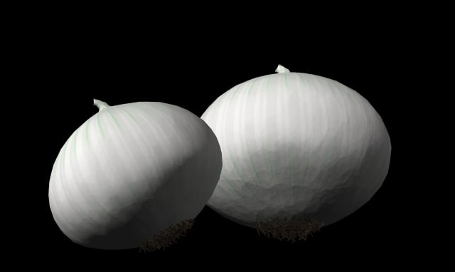 3d lwo onion white