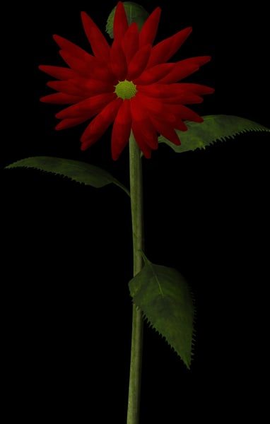 plant flower 3d obj