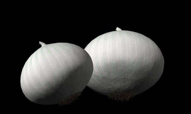 3d onion white model