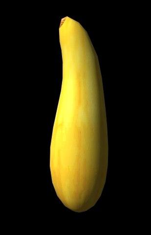 3d squash yellow model