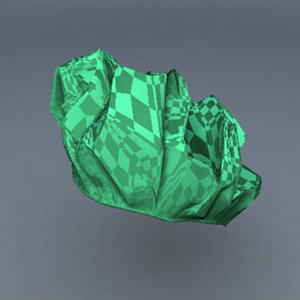 3d model shower cap