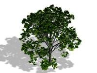 tree max free