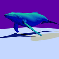 whale marine animals obj