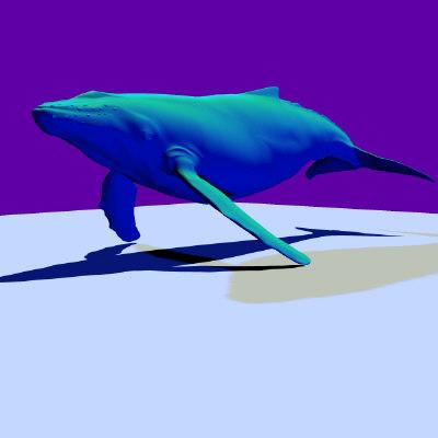 whale marine animals obj