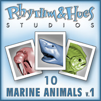 Marine Animals Volume 1.zip