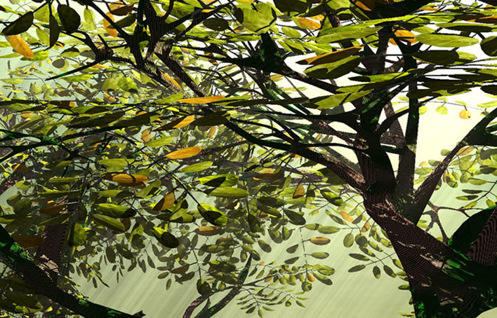 tree lightwave 3d model
