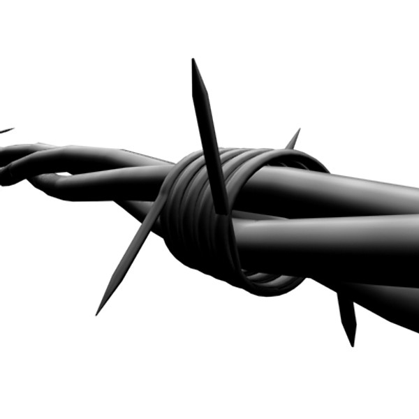 barbed wire 3d model