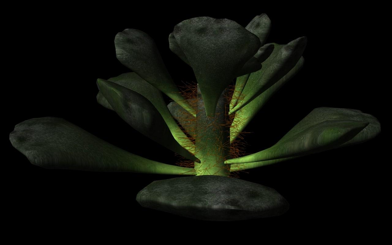3ds max succulents cacti petals