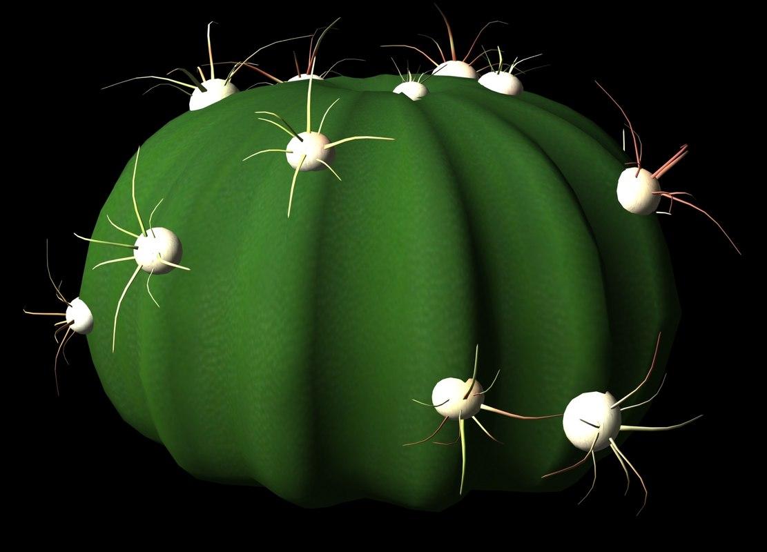 3dsmax succulents cacti petals