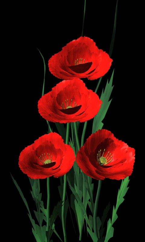 3d model wild flower plant