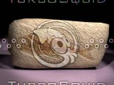 lightwave fish fossil