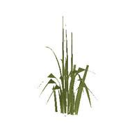 plante01.W3D